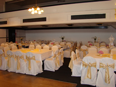 Taffeta and Organza Sashes