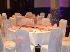 Baby Pink Organza and Light Curtain